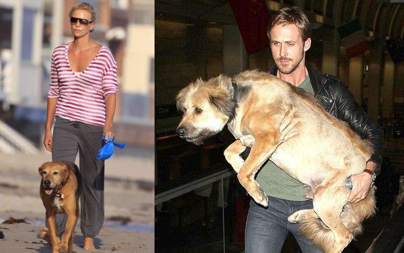 Charliza-Theron-Ryan-Gosling-M