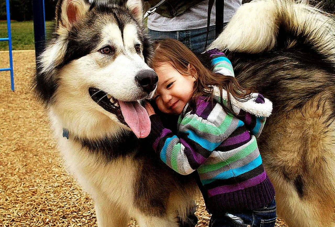 funny-pictures-of-kids-and-animals-30-pics-amazing-creatures