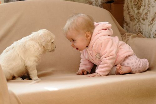 why-pets-are-good-for-kids