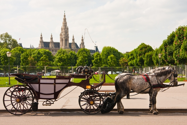 Discover-the-Town-Hall-in-Vienna-on-a-walking-tour