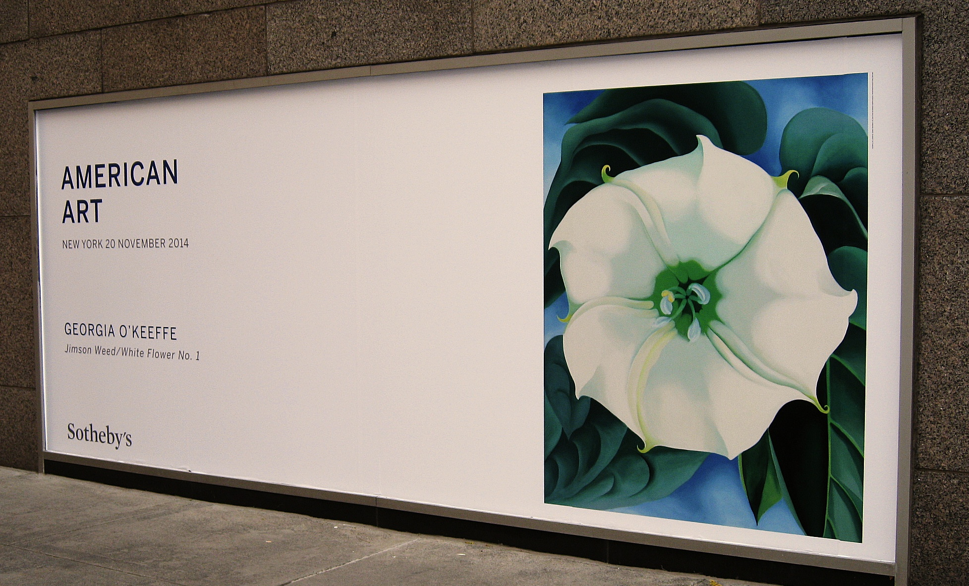 georgiaokeeffe-jimsonweed1