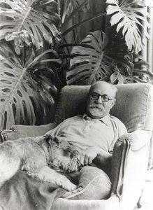 Matisse, ΤΟ BLOG ΤΟΥ ΝΙΚΟΥ ΜΟΥΡΑΤΙΔΗ, nikosonline.gr