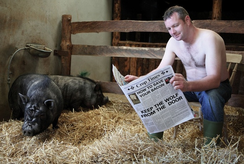 declan-w-newspaper-and-pig