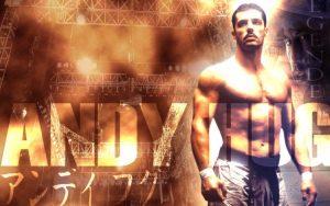 kickboxing, Andy Hug,