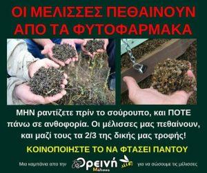 Χωρίς μέλισσες, δεν υπάρχει ζωή, ΜΕΛΙΣΣΕΣ, ΕΝΤΟΜΑ, MELISES, ENTOMA, ΜΕΛΙ, HONEY, nikosonline.gr