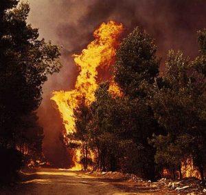 Πυρκαγιές στην Πελοπόννησο, 2007 Fire Greece, ΤΟ BLOG ΤΟΥ ΝΙΚΟΥ ΜΟΥΡΑΤΙΔΗ, nikosonline.gr